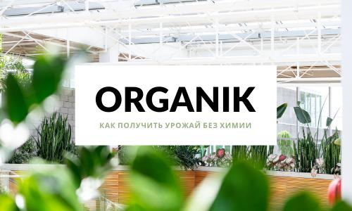 сайт про сад и огород